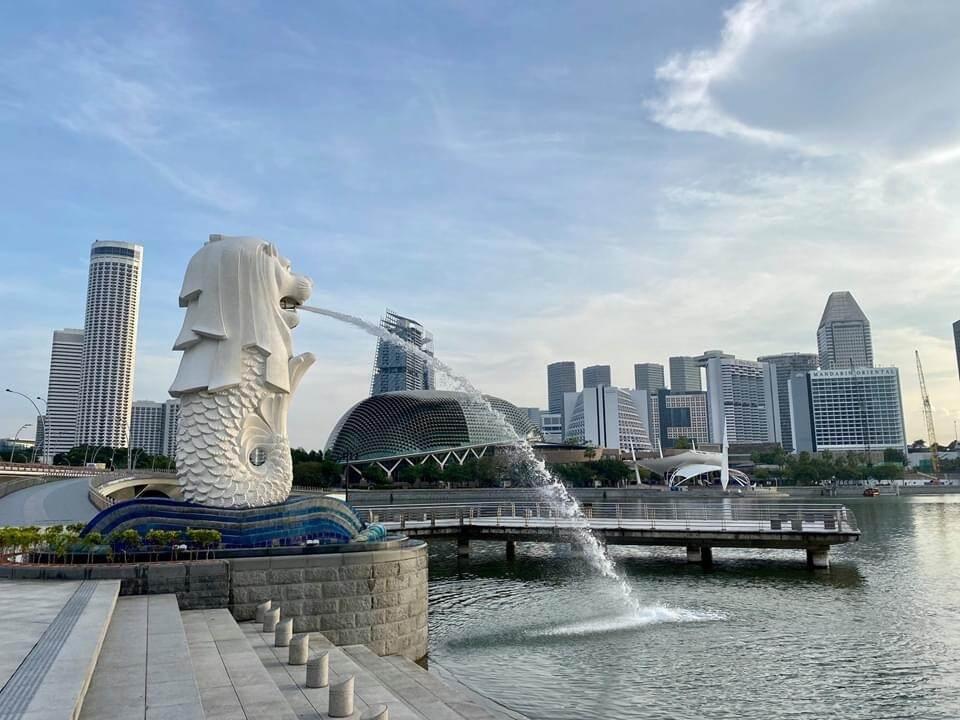 Netherlands Embassy Singapore Newsletter April 2020 Covid 19 Updates And Much More News Item Netherlandsandyou Nl